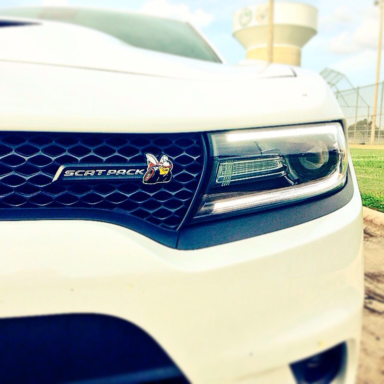 2015-Dodge-Charger-Scat-Pack-txGarage-0107