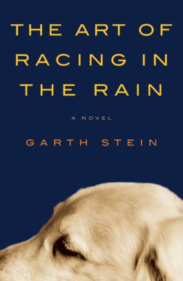 The Art of Racing in the Rain – Stein