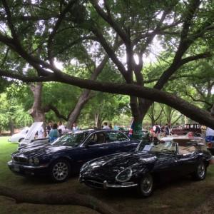 autos-in-the-park-003